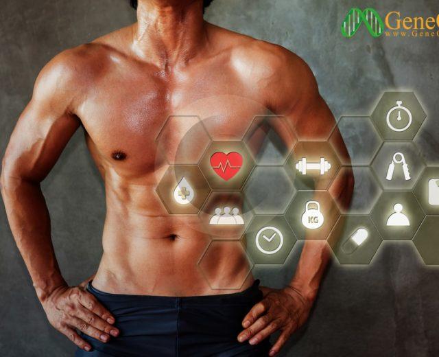 انواع تارهای عضلانی . آزمایش ژنتیک ورزشی . تست ژنتیک ورزشی